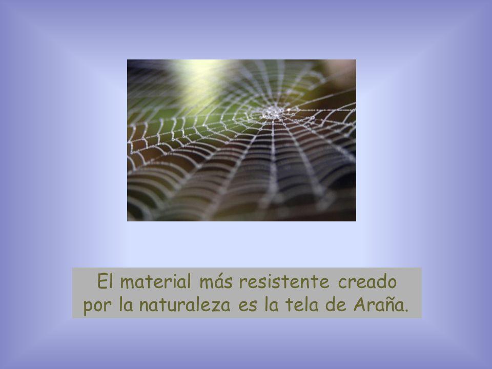 El material más resistente creado