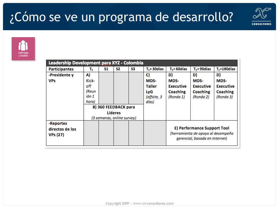 ¿Cómo se ve un programa de desarrollo