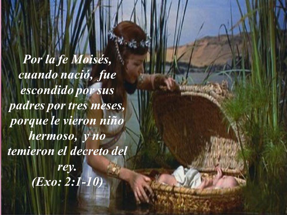 Por la fe Moisés, cuando nació, fue escondido por sus padres por tres meses, porque le vieron niño hermoso, y no temieron el decreto del rey.