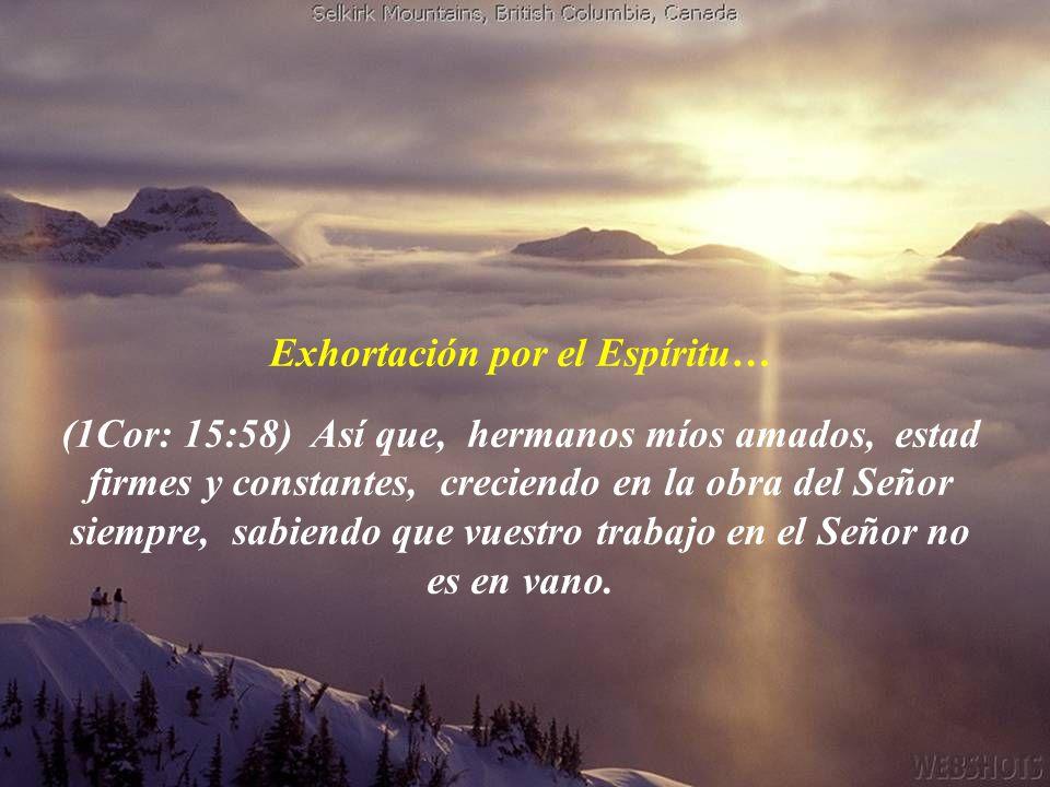 Exhortación por el Espíritu…