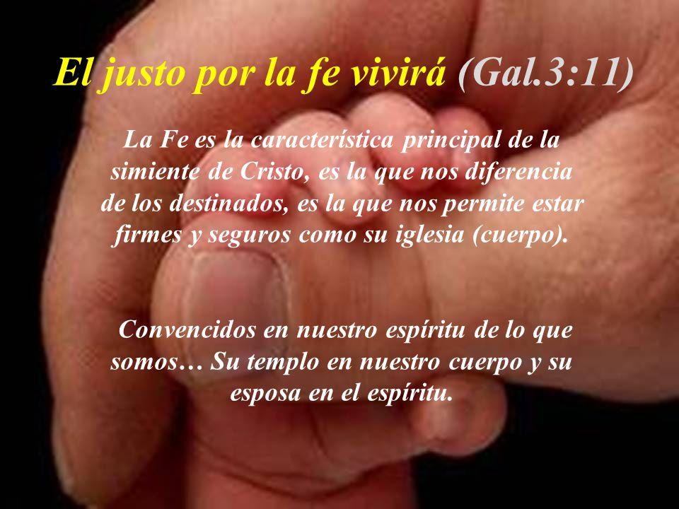 El justo por la fe vivirá (Gal.3:11)