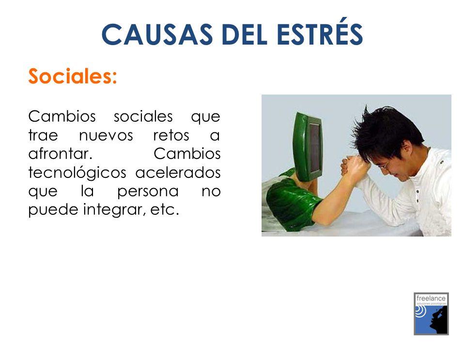 CAUSAS DEL ESTRÉS Sociales: