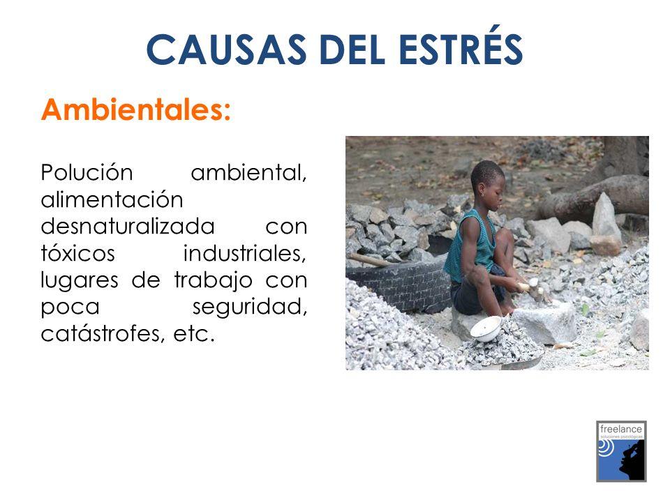 CAUSAS DEL ESTRÉS Ambientales: