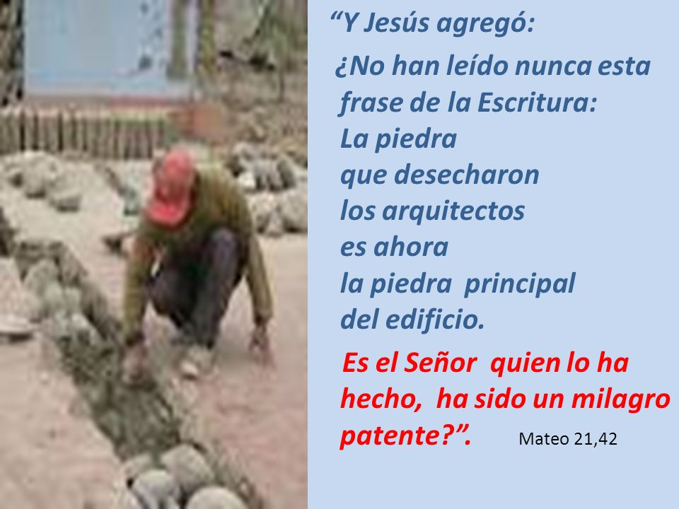 Y Jesús agregó: ¿No han leído nunca esta frase de la Escritura: La piedra que desecharon los arquitectos es ahora la piedra principal del edificio.
