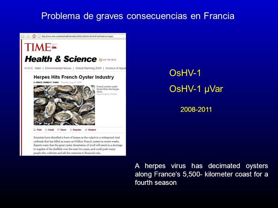 Problema de graves consecuencias en Francia