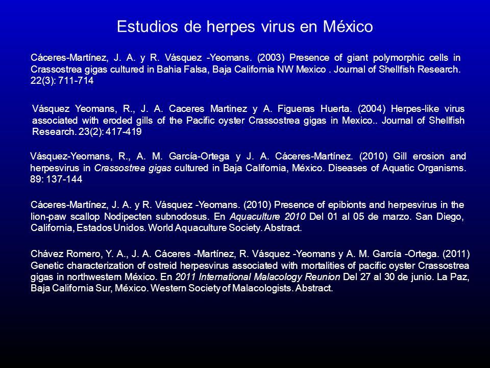 Estudios de herpes virus en México