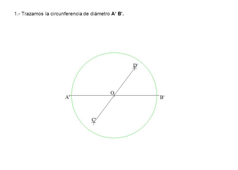 1.- Trazamos la circunferencia de diámetro A' B .