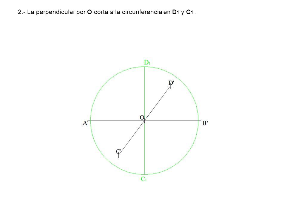 2.- La perpendicular por O corta a la circunferencia en D1 y C1 .