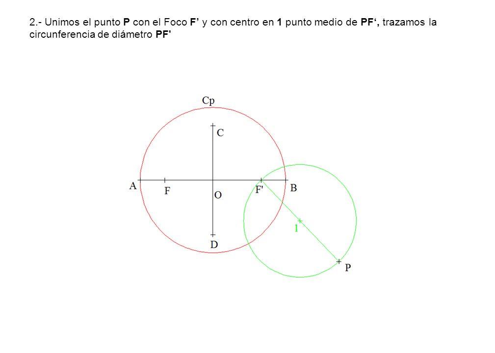 2.- Unimos el punto P con el Foco F' y con centro en 1 punto medio de PF', trazamos la circunferencia de diámetro PF