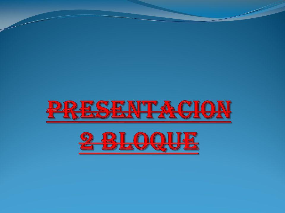 PRESENTACI0N 2 BLOQUE