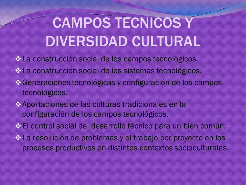 CAMPOS TECNICOS Y DIVERSIDAD CULTURAL