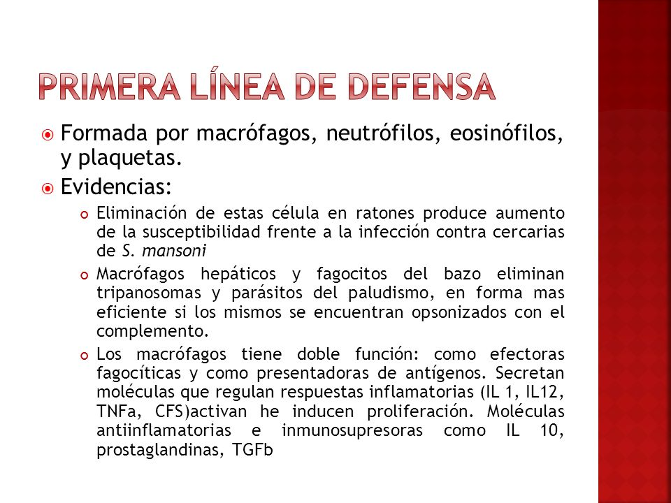 Primera línea de defensa