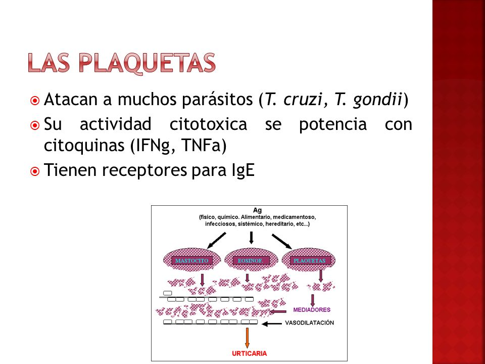 Las plaquetas Atacan a muchos parásitos (T. cruzi, T. gondii)