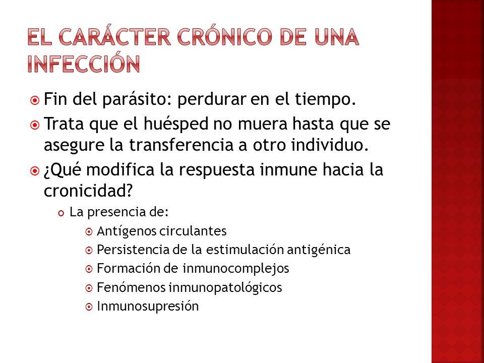 El carácter crónico de una infección