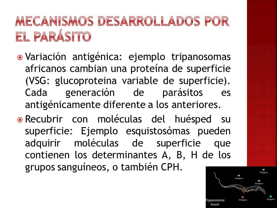Mecanismos desarrollados por el parásito