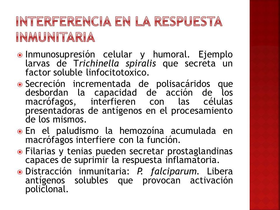 Interferencia en la respuesta inmunitaria