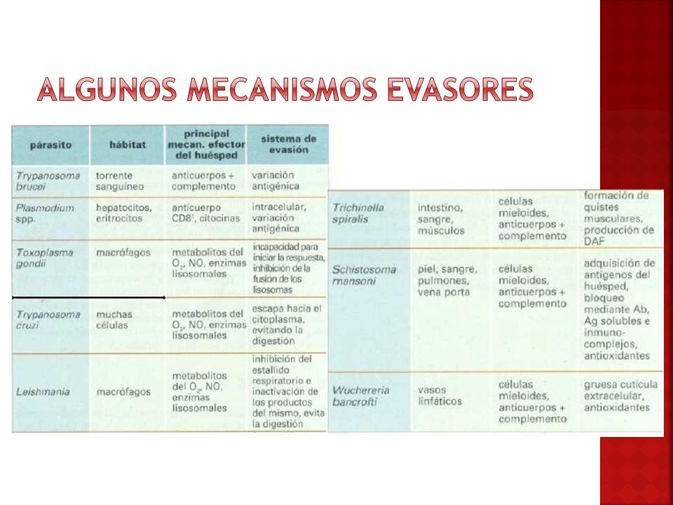 Algunos mecanismos evasores