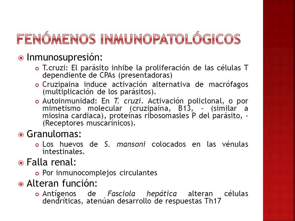 Fenómenos inmunopatológicos
