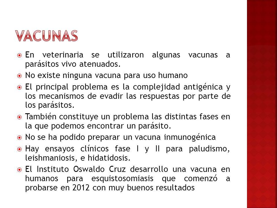 Vacunas En veterinaria se utilizaron algunas vacunas a parásitos vivo atenuados. No existe ninguna vacuna para uso humano.