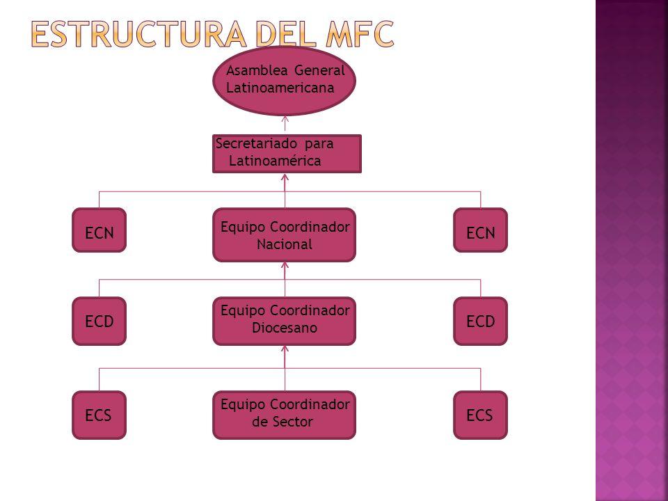 Estructura del mfc ECN ECN ECD ECD ECS ECS