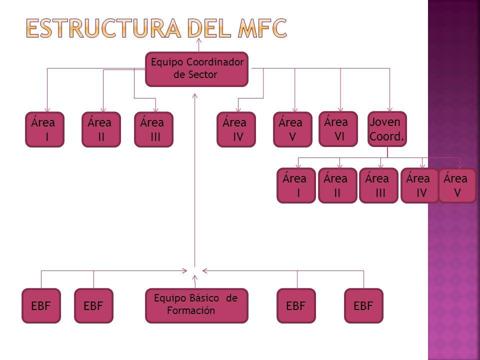 ESTRUCTURA DEL MFC Área I Área II Área III Área IV Área V Área VI