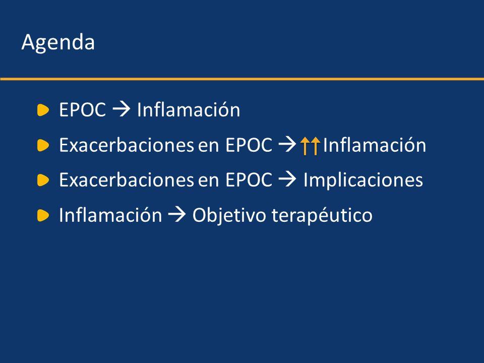 Agenda EPOC  Inflamación Exacerbaciones en EPOC  Inflamación