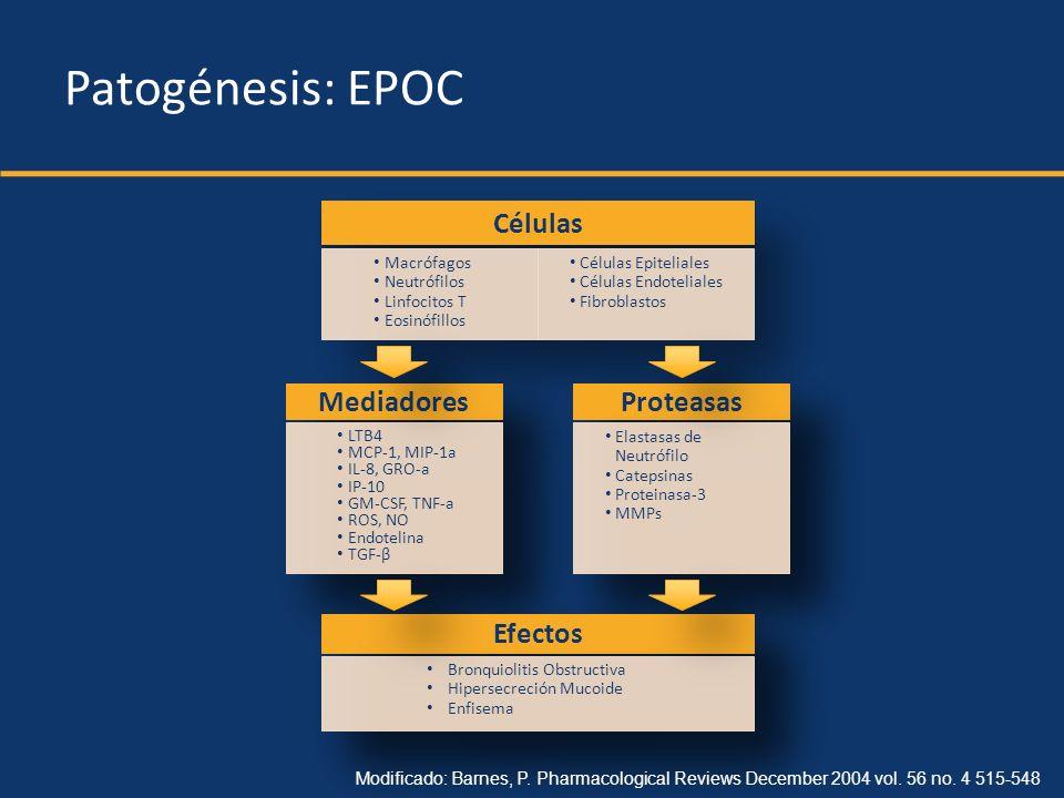 Patogénesis: EPOC Células Mediadores Proteasas Efectos Macrófagos