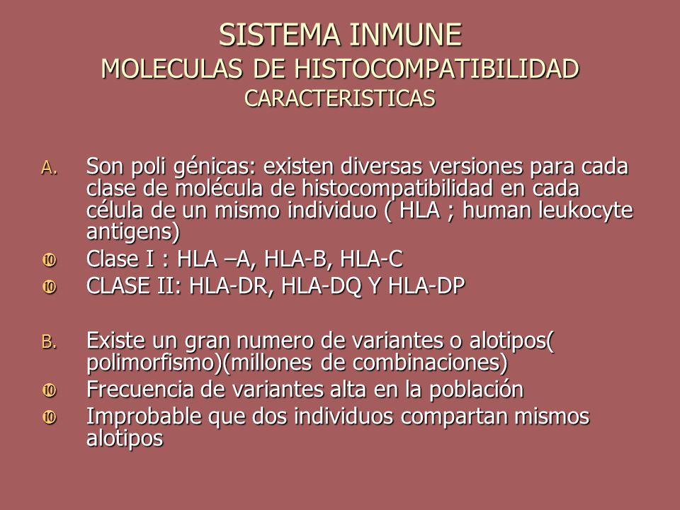 SISTEMA INMUNE MOLECULAS DE HISTOCOMPATIBILIDAD CARACTERISTICAS