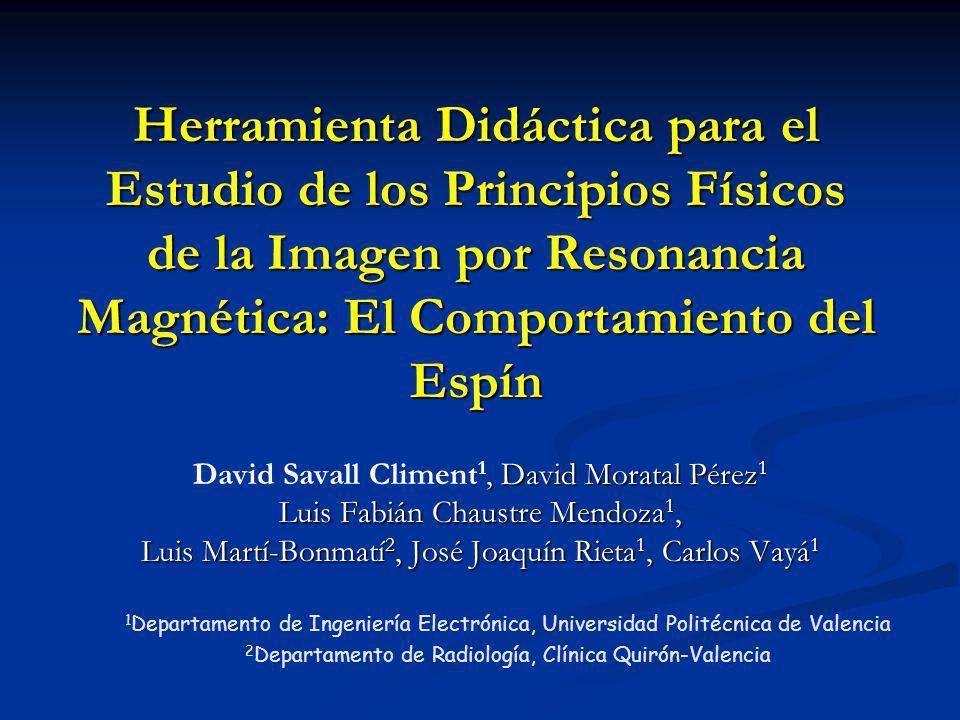 Herramienta Didáctica para el Estudio de los Principios Físicos de la Imagen por Resonancia Magnética: El Comportamiento del Espín