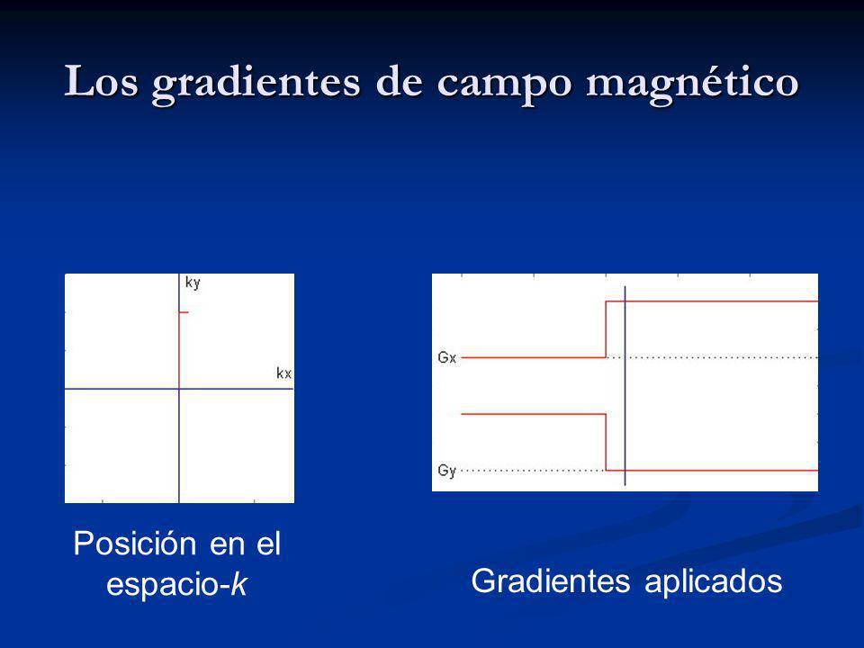 Los gradientes de campo magnético