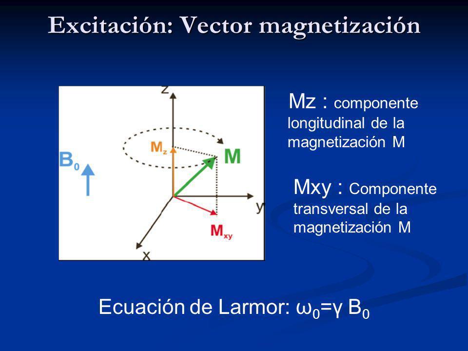 Excitación: Vector magnetización