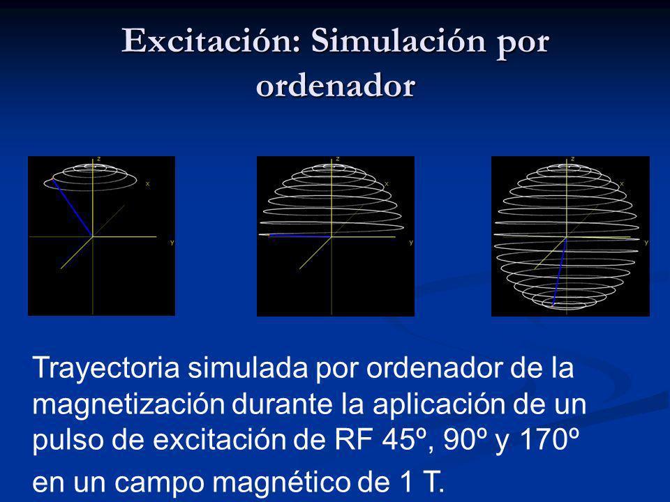 Excitación: Simulación por ordenador