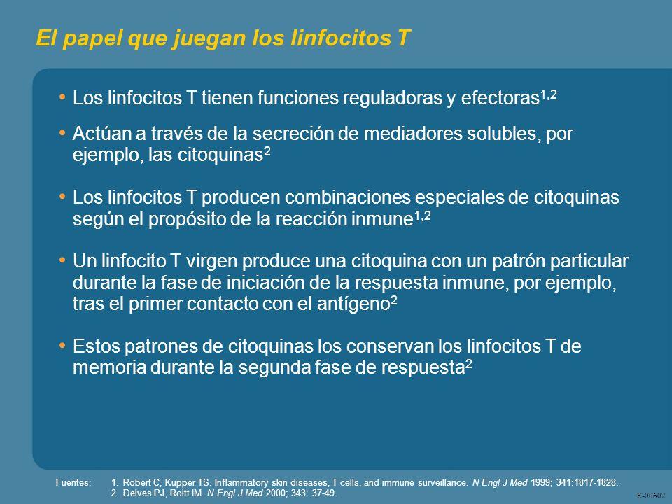 El papel que juegan los linfocitos T