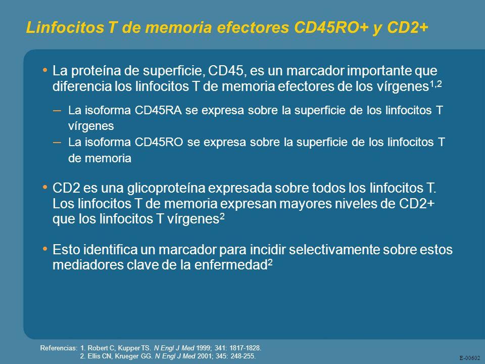 Linfocitos T de memoria efectores CD45RO+ y CD2+
