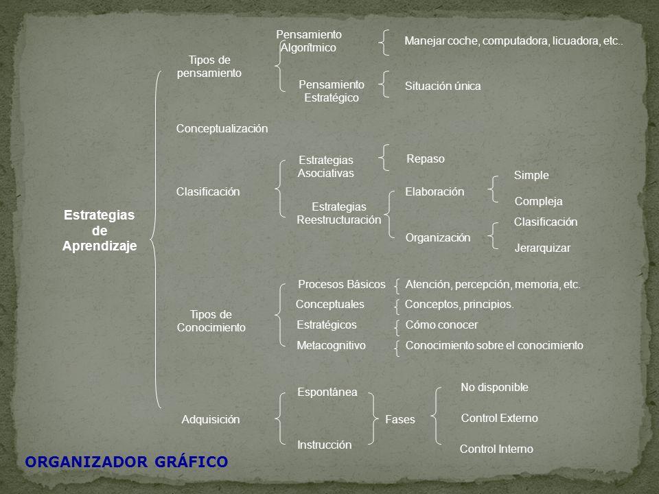 ORGANIZADOR GRÁFICO Estrategias de Aprendizaje Pensamiento Algorítmico