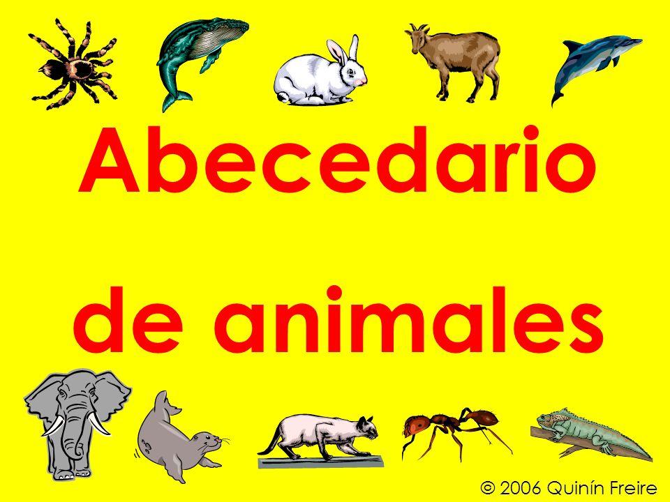 Abecedario de animales