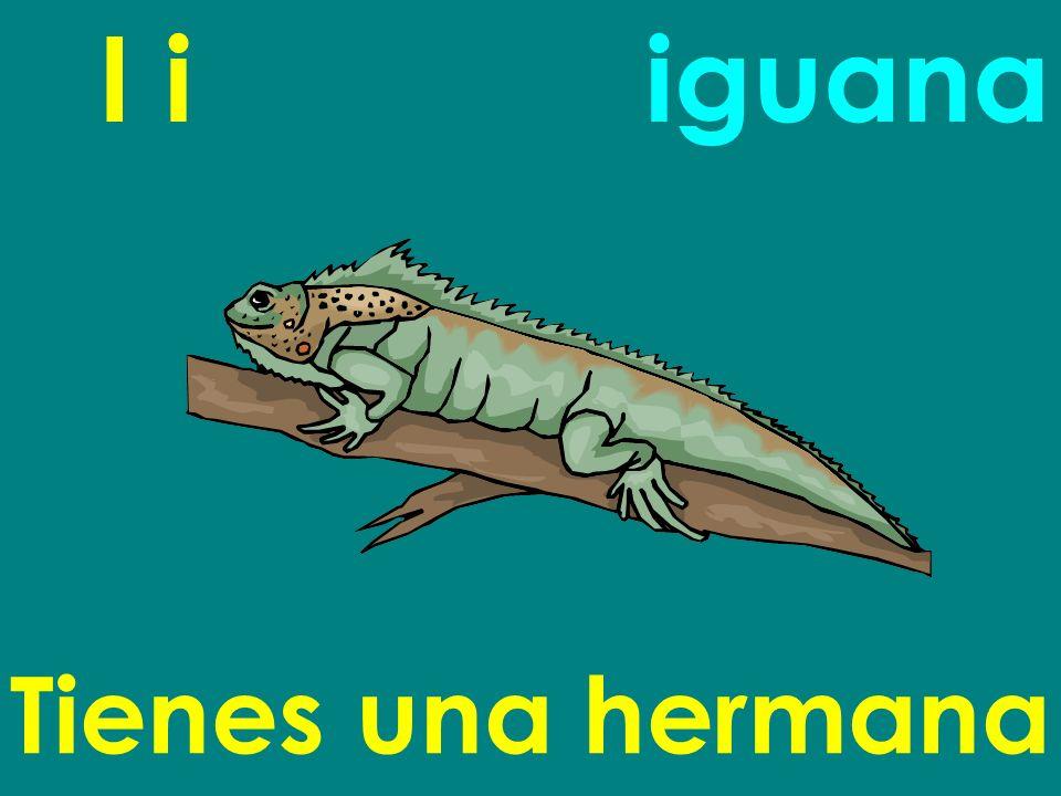 I i iguana Tienes una hermana