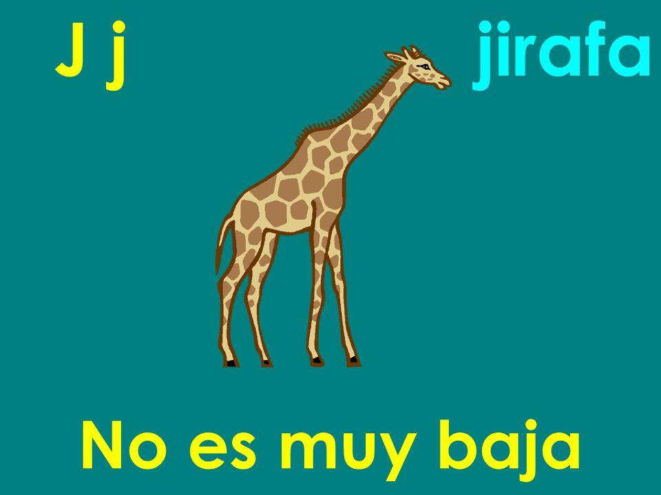 J j jirafa No es muy baja