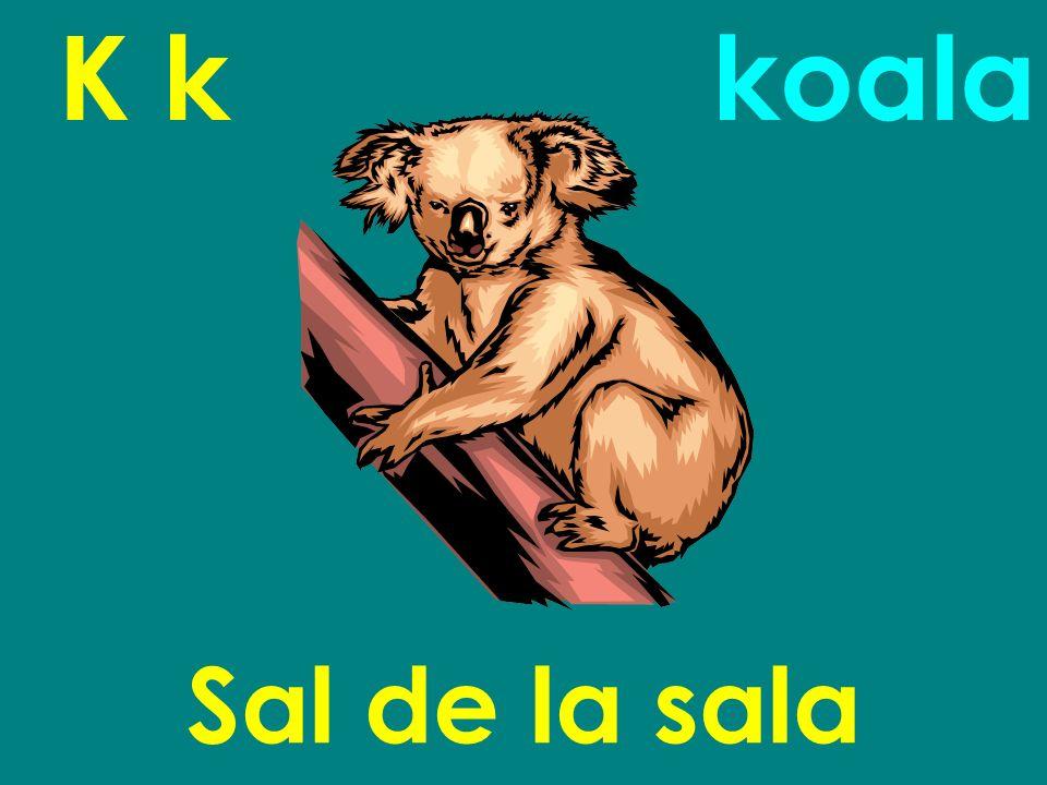K k koala Sal de la sala