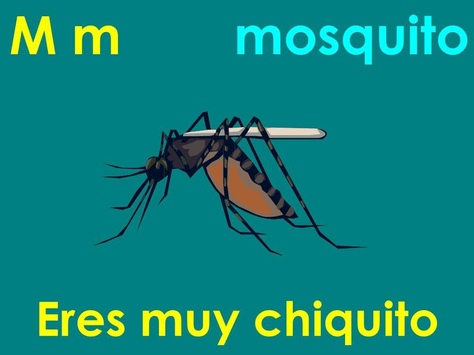 M m mosquito Eres muy chiquito