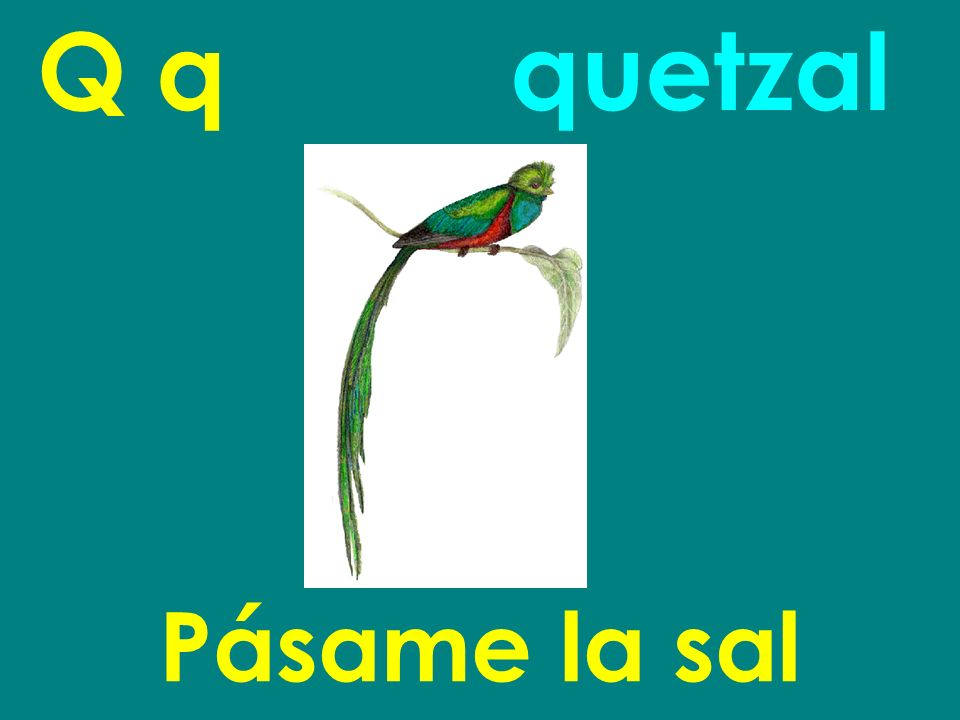Q q quetzal Pásame la sal