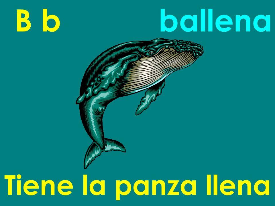 B b ballena Tiene la panza llena