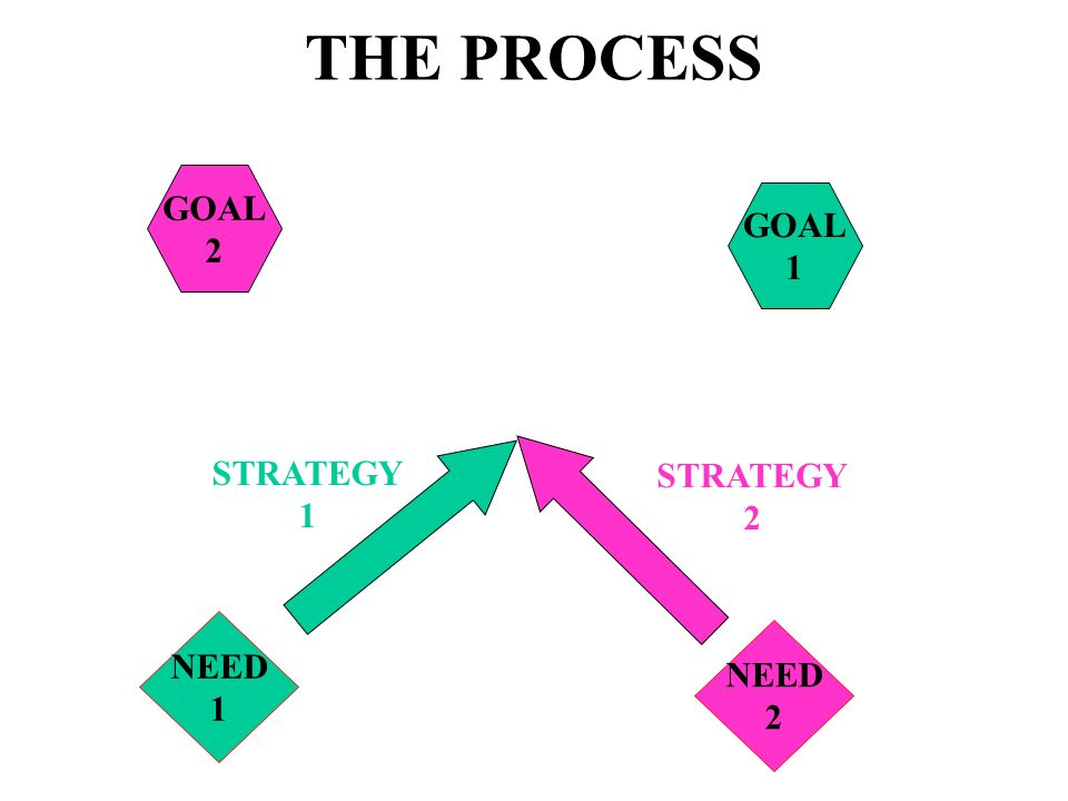 THE PROCESS GOAL 2 GOAL 1 STRATEGY 1 STRATEGY 2 NEED 1 NEED 2