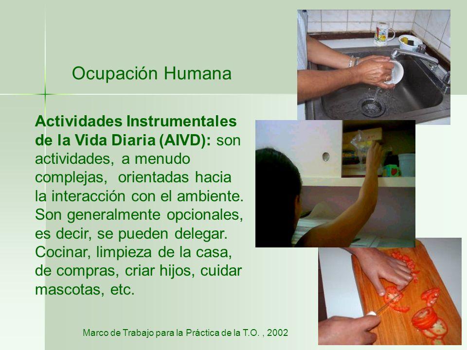 Ocupación Humana