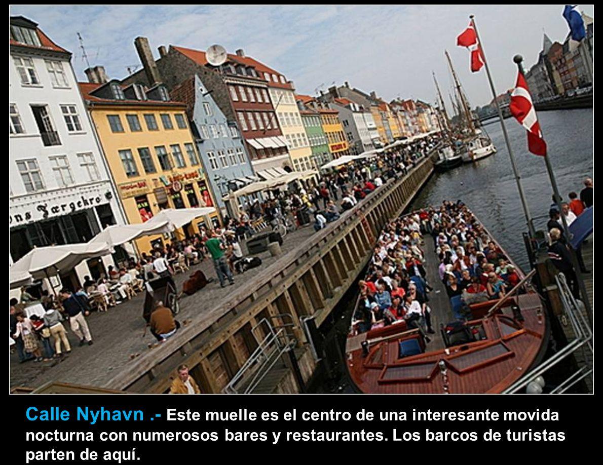 Calle Nyhavn .- Este muelle es el centro de una interesante movida nocturna con numerosos bares y restaurantes.