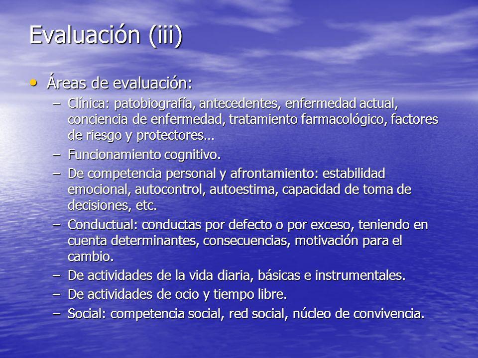 Evaluación (iii) Áreas de evaluación: