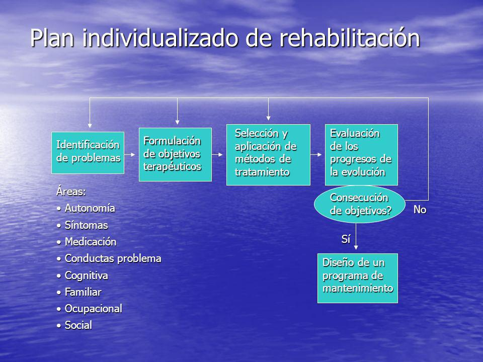 Plan individualizado de rehabilitación