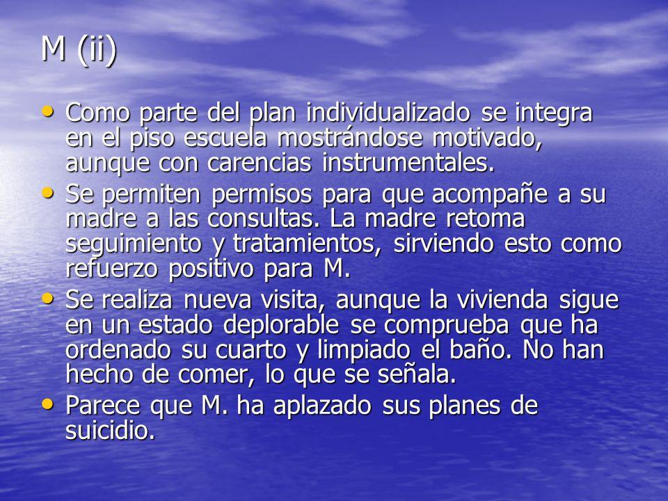 M (ii) Como parte del plan individualizado se integra en el piso escuela mostrándose motivado, aunque con carencias instrumentales.