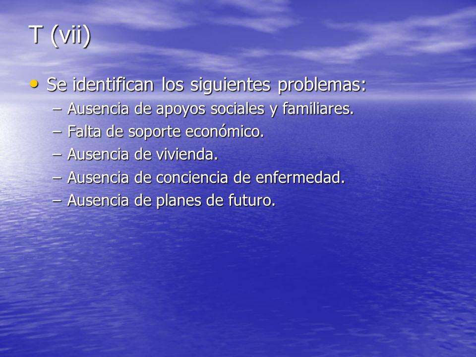 T (vii) Se identifican los siguientes problemas: