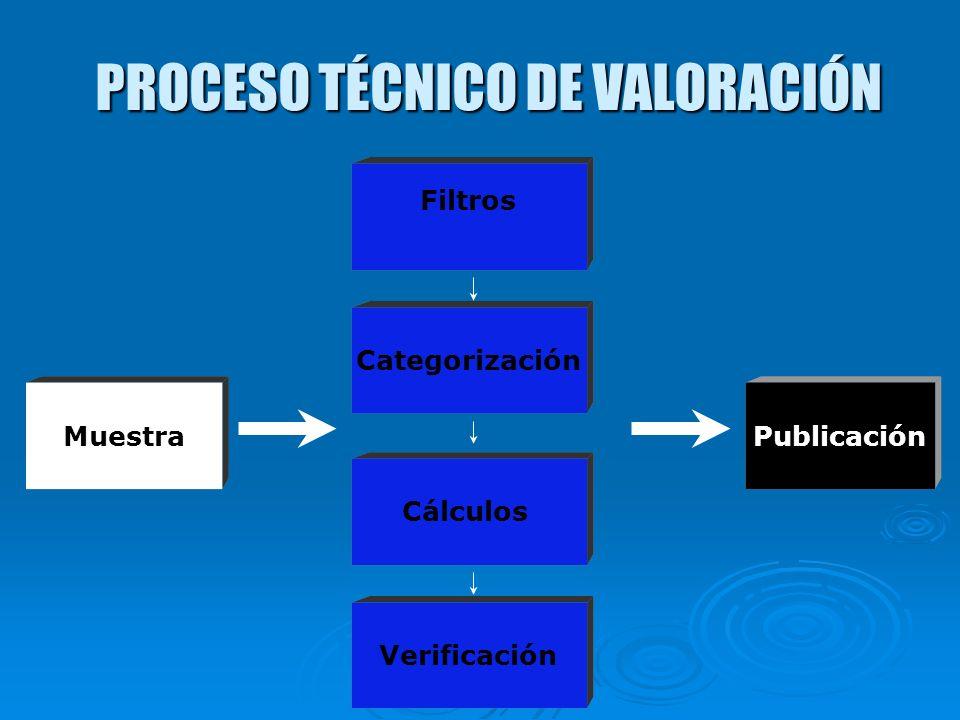 PROCESO TÉCNICO DE VALORACIÓN